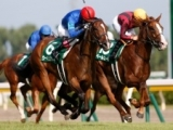 【阪神JF】ウーマンズハート ゴーサインに素早く反応、一気の加速力/有力馬1週前調教リポート