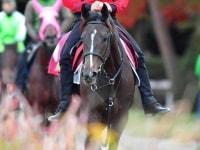 【阪神JF】リアアメリア無傷でG1獲りだ 中内田厩舎は2歳重賞との相性抜群