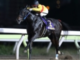 【カペラS】コパノキッキングは藤田菜七子騎手、ゴールドクイーンは古川吉洋騎手/JRA重賞想定騎手