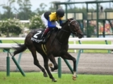 【次走】ラインベックはホープフルSへ 鞍上は岩田康誠騎手