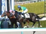 【阪神6R新馬戦】スズカパイロットがゴール寸前で差し切り新馬勝ち/JRAレース結果