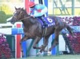 【朝日杯FS】サリオスが好位から押し切り戴冠! 無傷3連勝で2歳マイル王!/JRAレース結果
