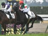 【京都6R新馬戦】アルテフィーチェが逃げ切り初陣飾る/JRAレース結果