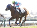 【中山6R新馬戦】フォースオブウィルが外からまとめて差し切りV/JRAレース結果