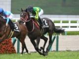 【日経新春杯】登録馬 サトノガーネット、メロディーレーンなど16頭
