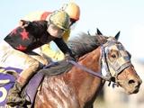【地方競馬】年度代表馬はブルドッグボス!『NARグランプリ2019』表彰馬が決定