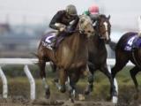 【競馬ファンが選ぶ最優秀地方馬】NARグランプリ同様にブルドッグボス/最終結果発表