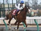 【東海S】インティは武豊騎手、スマハマは藤岡佑介騎手/JRA重賞想定騎手