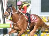 カラクレナイが引退、繁殖馬に