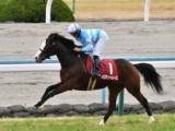 【次走】メロディーレーンは阪神大賞典を目標に