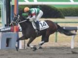 【京都6R新馬戦】ヴァルキュリアが外から差し切りデビュー勝ち/JRAレース結果