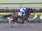 【東京4R新馬戦】アキノスマートが人気に応え5馬身差完勝/JRAレース結果