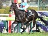 【京都牝馬S】登録馬 ディアンドル、シゲルピンクダイヤなど18頭