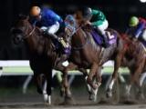 【エンプレス杯】(川崎) JRA所属の出走予定馬および補欠馬について
