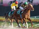 【フェブラリーS】登録馬 モズアスコット、インティなど24頭