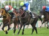 【ダイヤモンドS】タイセイトレイルは中谷雄太騎手、リッジマンはフォーリー騎手/JRA重賞想定騎手