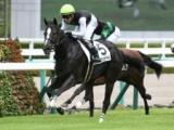 【次走】クラヴァシュドールはM.デムーロ騎手との新コンビでチューリップ賞へ