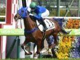 【阪神5R新馬戦】トリンカデイラが内をすくって差し切りV/JRAレース結果