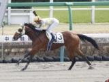 【中山4R新馬戦】ベイビーボスが抜け出しデビュー勝ち/JRAレース結果