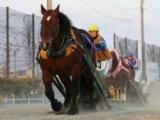 【地方競馬】ばんえい競馬は3月末まで無観客競馬に、21日のばんえい記念含む