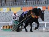 【ばんえい記念】オレノココロが王座奪還!2年ぶり3度目のV/地方競馬レース結果