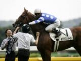 【スプリングS・豆知識】笠松牧場生産馬はディープスカイ以来11年半ぶり2頭目の重賞制覇