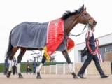 【高松宮記念】登録馬 ダノンスマッシュ、モズアスコットなど25頭