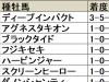 【毎日杯】上位人気のディープインパクト産駒が堅実/データ分析(血統・種牡馬編)