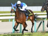 【次走】6億円ホース・アドマイヤビルゴは武豊騎手で京都新聞杯へ 皐月賞には向かわず