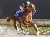 【高松宮記念】モズアスコット&M.デムーロ騎手、アイラブテーラー&武豊騎手など18頭/JRA重賞出走馬確定