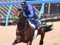 【大阪杯】ブラストワンピース 上昇ムード 昨年6着のリベンジへ気合注入