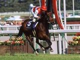 高松宮記念覇者ショウナンカンプが死亡、22歳