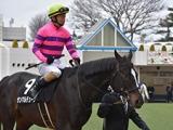【先週のJRA抹消馬】11歳馬サンマルデューク、重賞2着3回タムロミラクルなど