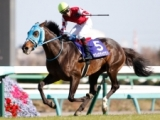 【中山GJ】登録馬 オジュウチョウサン、シングンマイケルなど12頭