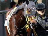 【海外競馬】日本からの移籍馬エイシンルークが豪リステッド競走を勝利