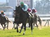 【優駿牝馬】登録馬 デアリングタクト、ウインマリリンなど25頭
