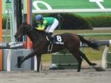 【北海道SC】(6月4日、門別) JRA所属の出走予定馬および補欠馬について