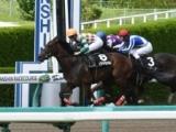 【JRA】6月6日の阪神にレース新設など番組変更 3勝クラスに出走予定馬が多く見込まれるため