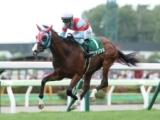 【葵S想定】重賞勝ち馬ビアンフェ、マーガレットS制覇のエレナアヴァンティなど18頭