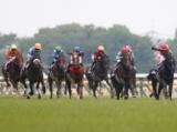 【安田記念想定】アーモンドアイ、インディチャンプ、アドマイヤマーズなどGI馬10頭を含む16頭