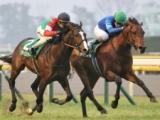 【日本ダービー展望】波乱が続く競馬の祭典、あの馬の巻き返しを期待したい