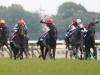 【JRA】6月もグリーンチャンネル「中央競馬全レース中継」は無料放送 安田記念・宝塚記念など開催