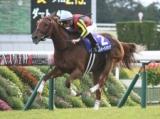 【宝塚記念】登録馬 ラッキーライラック、サートゥルナーリアなど18頭