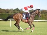 【凱旋門賞】(フランス)日本馬の登録はディアドラのみ