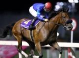 【スパーキングレディーC】(川崎) JRA所属の出走予定馬および補欠馬について