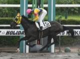 【ラジオNIKKEI賞ハンデ確定】武豊騎手とコンビのパラスアテナは52kg、DG勝ち馬キメラヴェリテは56kg