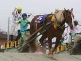 【地方競馬】ばんえいの「JRAジョッキーDAY2020」、今年は開催見送り 新型コロナウイルス感染拡大防止のため
