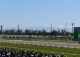 【JRA】8月15日からの新潟開催は県内在住者限定で1日あたり約600名の指定席券で入場を再開