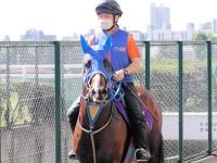 【エルムS】タイムフライヤー輝き取り戻した 2年7カ月ぶり勝利でルメール自信