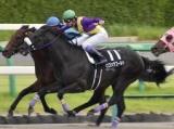 【クラスターC】ヒロシゲゴールド交流重賞Vへ、発馬と展開が鍵/馬三郎のつぶやき